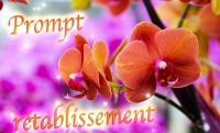 prompt-retablissement